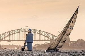 Yacht sailing past a lighthouse in front of the Harbour Bridge in Sydney, New South Wales, Australia, November 2012. All non-editorial uses must be cleared individually.  -  Onne  van der Wal
