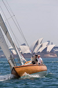 Yacht sailing in front of the Sydney Opera House, Sydney Harbour, New South Wales, Australia, October 2012. All non-editorial uses must be cleared individually. - Onne  van der Wal