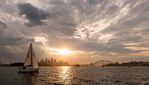 Luxury yacht sailing at dusk in the Sydney Harbour, New South Wales, Australia, October 2012. All non-editorial uses must be cleared individually. - Onne  van der Wal
