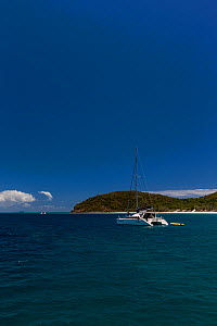 Catamaran on the coast of Hamilton Island, Whitsunday Islands, Queensland, Australia, November 2012.  -  Onne  van der Wal