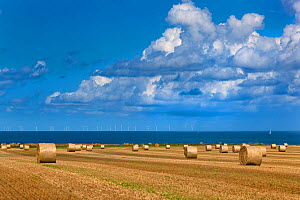 Straw bales and field of stubble, Weybourne, Norfolk, UK August.  -  Ernie  Janes