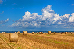 Straw bales and field of stubble, Weybourne, Norfolk, UK August 2014.  -  Ernie  Janes