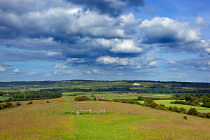 View towards Whipsnade and the Chalk Lion, Chiltern Downland, Ivinghoe Hills, Buckinghamshire, UK. June 2014. June. - Ernie  Janes