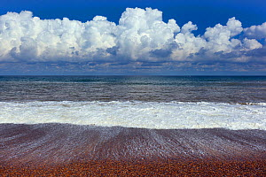 RF- Waves of the North Sea washing onto Weybourne beach, Norfolk, UK. August 2014. (This image may be licensed either as rights managed or royalty free.)  -  Ernie  Janes