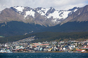 Ushuaia in front of Martial mountains, Tierra del Fuego, Argentina, January.  -  Michael Hutchinson