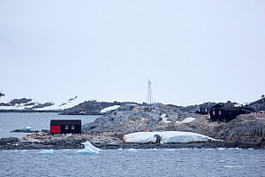Goudier Island with gentoo penguin (Pygoscelis papua) colony, Port Lockroy, Antarctica, January.  -  Michael Hutchinson