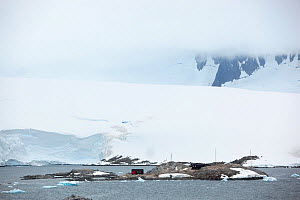 Goudier Island, Port Lockroy, Antarctica, January.  -  Michael Hutchinson