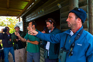 Men holding Eurasian penduline tit (Remiz pendulinus) at bird ringing demonstration, Hula Valley, Israel, November 2014.  -  Juan  Carlos Munoz