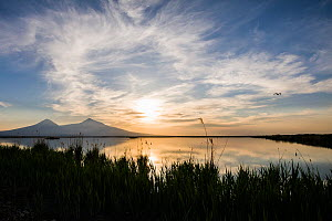 Armash fishponds at sunset with Snow covered Mount Ararat (right) and Lesser Snow covered Mount Ararat (left), Armenia, May.  -  Martin Gabriel