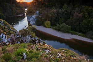 Danube Canyon at sunset, Weltenburger Enge Nature Reserve, Kelheim County, Bavaria, Germany, August.  -  Martin Gabriel