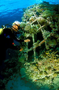 Diver exploring 'Barnacle' artificial reef, built in 2001 with a steel frame using mild electric currents to encourage coral growth. Shape is built as habitat for fish. Ihuru Island in North Male Atol...  -  Pascal Kobeh