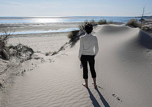 Woman on beach looking out to sea, at mouth of Authie river, Berck, France, August 2006. - Pascal  Tordeux