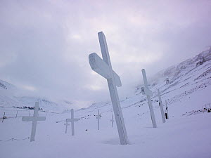 Graveyard with white crosses half buried in snow, Svalbard, Norway. March. - Pal Hermansen