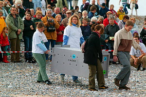 Volunteers carrying rehabilitated Harbour seal (Phoca vitulina) to the shore to be released, watched by spectators. Bay of Somme, France, 3rd October 2004.  -  Cyril Ruoso
