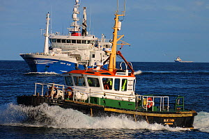 Peterhead pilot vessel and  Pelagic fishing vessel 'Lunar Bow', October 2014.  All non-editorial uses must be cleared individually. - Philip  Stephen