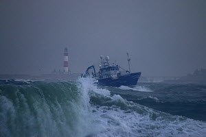 Fishing vessel 'Surmount' in rough weather approaching Peterhead Harbour, November 2014.  All non-editorial uses must be cleared individually. - Philip  Stephen