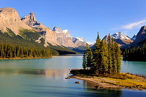 Spirit Island, Maligne Lake, Jasper National Park, Rocky Mountains, Alberta, Canada, September 2009  -  Eric Baccega