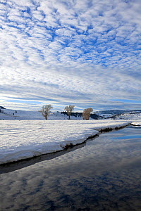 Lamar River in snow, Lamar Valley of Yellowstone National Park, Wyoming, USA. February 2015.  -  Kirkendall-Spring