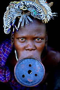 Woman with lip plate, which signifies she is a married woman, Mursi tribe, Mago National Park. Ethiopia, November 20144  -  Enrique Lopez-Tapia
