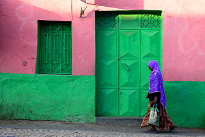 Muslim woman walking down colourful narrow streets, in Harar, an important holy city in the Islamic faith, UNESCO World Heritage Site. Ethiopia, November 2014  -  Enrique Lopez-Tapia