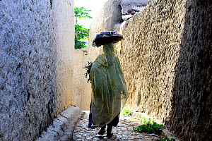 Muslim woman walking down narrow streets, Harar, an important holy city in the Islamic faith, UNESCO World Heritage Site. Ethiopia, November 2014  -  Enrique Lopez-Tapia