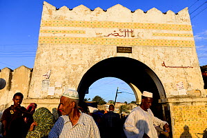 Busy street scene with archway in Harar, an important holy city in the Islamic faith, UNESCO World Heritage Site. Ethiopia, November 2014  -  Enrique Lopez-Tapia