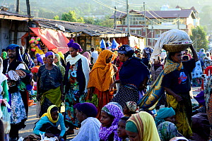 Busy market scene in Harar, an important holy city in the Islamic faith, UNESCO World Heritage Site. Ethiopia, November 2014  -  Enrique Lopez-Tapia