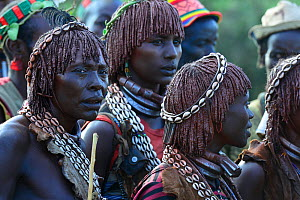Hamer women in traditional clothing at the Jumping of the bulls ceremony. Ethiopia, November 2014 - Enrique Lopez-Tapia