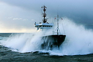Tug 'Abeille Bourbon' in rough sea on the Iroise Sea, Brest, Brittany, France, April 2005. All non-editorial uses must be cleared individually. - Benoit  Stichelbaut
