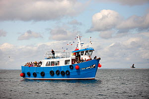 Passenger boat travelling between the Farne Islands and Seahouses, Northumberland, England, UK. July 2009. All non-editorial uses must be cleared individually.  -  Jose B.  Ruiz