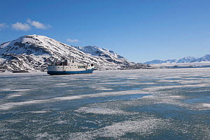 'Polaris 1' passenger vessel, entering winter fast ice in Liefdefjorden, Spitsbergen, Svalbard, 2013. All non-editorial uses must be cleared individually. - Rick Price