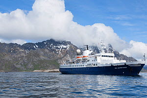 'Sea Adventurer', formerly the 'Clipper Adventurer', at anchor off Henningsvaer, Lofoten Islands, Norway, June 2015. All non-editorial uses must be cleared individually. - Rick Price