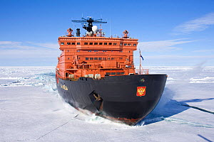 The world's largest nuclear-powered icebreaker, '50 years of Victory', on the way to the North Pole, Russian Arctic, July 2008. All non-editorial uses must be cleared individually. - Sue Flood
