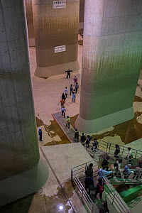 Tourists at G-Cans Project, world's largest underground flood water diversion facility, Kasukabe, Saitama, Greater Tokyo Area, Japan, Asia. March 2014. - Mark  MacEwen