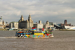 Dazzle painted Mersey Ferry 'Snowdrop' carrying passengers to Seacombe. Merseyside, England UK. April 2015 All non editorial uses must be cleared individually. - Norma  Brazendale