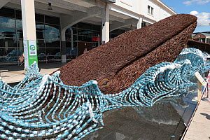 The Bristol Whales - wicker sculpture of two Blue whales surfacing surrounded by plastic bottles. Art installation by Cod Steaks to mark the Bristol Green Capital 2015. Millennium square, Bristol, Eng...  -  Ben Gillett