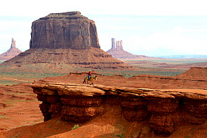 Navajo man riding horse in front of rock formations of Monument Valley, Utah, USA, May 2014.  -  Daniel  Heuclin