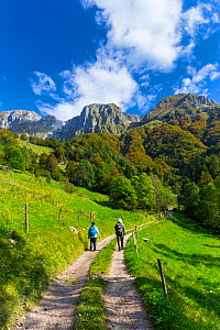 Tourists hiking along dirt track, Triglav National Park, Julian Alps,  Slovenia, October 2010.  -  Juan  Carlos Munoz