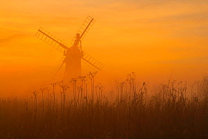 St Benets Level Drainage Mill at sunset. Norfolk Broads, England, UK, February. - Ernie  Janes
