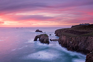 View towards Enys Dodnan Arch and the Armed Knight rock at sunset, with Longships lighthouse in the distance, Land's End, Cornwall, UK. March 2015.  -  Ross Hoddinott