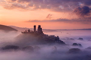 Corfe Castle, early morning llight and mist, Corfe Castle, Dorset, UK. September 2014. - Ross Hoddinott