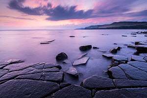 Kimmeridge Bay ledges at sunset, Dorset, UK. September 2014. - Ross Hoddinott