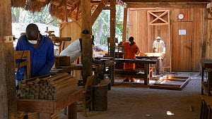 Men working in a workshop in a sustainable timber yard, Mezimbite Sustainable Forest Camp, Mozambique, 2014. - Steve O. Taylor (GHF)