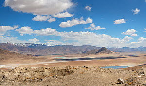 Desert landscape with lakes in Pamir's Plateau at 4000m,  Pamir Mountains, Tajikistan. June 2014.  -  Konstantin Mikhailov