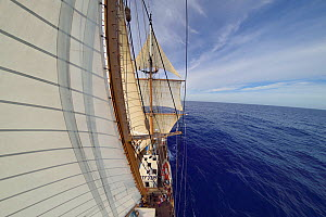 Fish eye view of sails of Corwith Cramer, 134-foot steel brigantine research vessel, Sargasso Sea, Bermuda, April. - Solvin Zankl