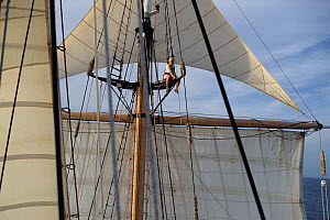 Corwith Cramer, a 134-foot steel brigantine built as a research vessel for operation under sail. Sargasso Sea, Bermuda - Solvin Zankl