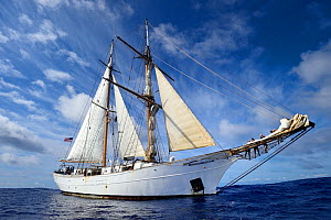 Corwith Cramer, a 134-foot steel brigantine,  Sargasso Sea, Bermuda, April 2014. - Solvin Zankl
