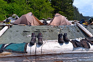 Boots and gators left out to dry at Walbran Creek Camp, along the West Coast Trail, Pacific Rim National Park Reserve, British Columbia, Canada, May 2015. - Kirkendall-Spring