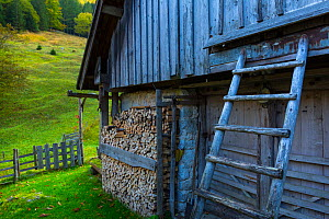 Log piles in alcove outside farm building, Triglav National Park, Trenta Valley, Julian Alps, Bovec, Slovenia, October 2014. - Juan  Carlos Munoz