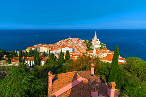 Landscape of the town of Piran and the coast, Slovenia, September 2014.  -  Juan  Carlos Munoz